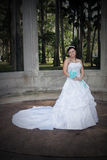 Beautiful Young Bride (1) Stock Images