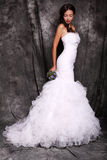 Beautiful young bride in luxurious dress Royalty Free Stock Photography