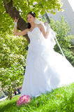 Beautiful young bride outdoors Royalty Free Stock Photos