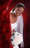 Beautiful Young Bride Portrait Royalty Free Stock Photography