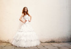 Beautiful young bride posing against a background of an wall Stock Image