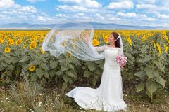 Bridal veil in the wind Royalty Free Stock Image