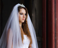 Beautiful young bride ready for wedding ceremony. royalty free stock images