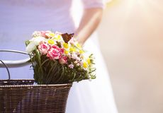 Beautiful young bride Stock Photography