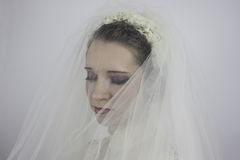 Beautiful young bride wearing veil. Close-up of pretty young bride wearing veil Royalty Free Stock Photos