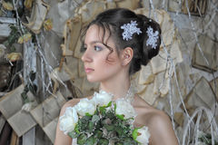 Beautiful young bride in a wedding dress Royalty Free Stock Photos