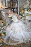 Beautiful young bride in a wedding dress Stock Images