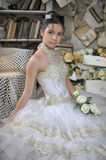 Beautiful young bride in a wedding dress Stock Photography