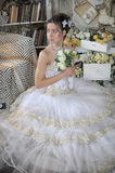 Beautiful young bride in a wedding dress Stock Photos