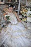 Beautiful young bride in a wedding dress Royalty Free Stock Image