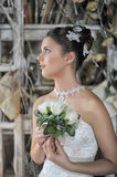 Beautiful young bride in a wedding dress Stock Image