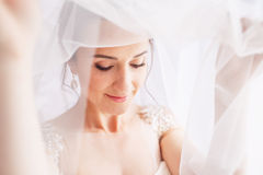 Beautiful young bride with wedding makeup and hairstyle in bedroom.Beautiful bride portrait with veil over her face. Closeup. Portrait of young gorgeous bride Royalty Free Stock Image