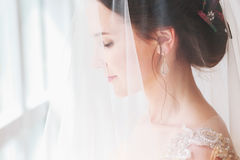 Beautiful young bride with wedding makeup and hairstyle in bedroom.Beautiful bride portrait with veil over her face. Closeup. Portrait of young gorgeous bride Stock Photography