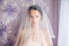 Beautiful young bride with wedding makeup and hairstyle in bedroom.Beautiful bride portrait with veil over her face. Closeup portr. Ait of young gorgeous bride Stock Photo