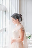 Beautiful young bride with wedding makeup and hairstyle in bedroom.Beautiful bride portrait with veil over her face. Closeup portr. Ait of young gorgeous bride Stock Photos