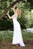 Beautiful young bride in white dress with bouquet near tree in summer green park Stock Images
