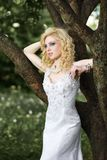 Beautiful young bride in white dress with bouquet near tree in summer green park Stock Image