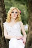 Beautiful young bride in white dress sits on tree in summer green park Royalty Free Stock Photos