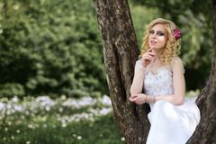 Beautiful young bride in white dress sits on tree in summer green park Royalty Free Stock Photography
