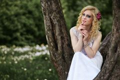 Beautiful young bride in white dress sits on tree in summer green park Stock Photos