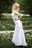 Beautiful young bride in white dress in summer green park Royalty Free Stock Image
