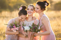 Beautiful young bridesmaids. Beautiful Bridesmaids in a pink dresses royalty free stock image