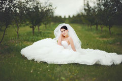 Beautiful young brunette bride posing in spring Royalty Free Stock Photo