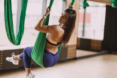 Beautiful young brunette girl dressed in the sport clothes is on the green aerial silk in the modern gym royalty free stock images