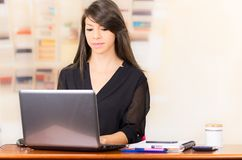 Beautiful young brunette girl working with laptop Stock Photos