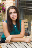 Beautiful young brunette Royalty Free Stock Images