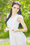 Beautiful young brunette posing in nature Royalty Free Stock Image