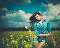Beautiful young brunette Stock Images