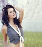 Beautiful young brunette woman Stock Photos