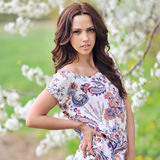 Beautiful young brunette woman on the meadow Royalty Free Stock Photos