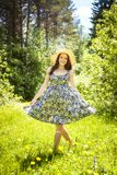 Beautiful young brunette woman on the meadow Royalty Free Stock Image