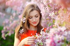 Beautiful young brunette woman standing near the apple tree Stock Image