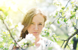 Beautiful young brunette womannear the apple tree Royalty Free Stock Image