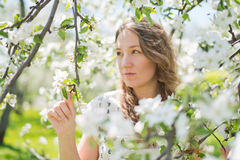 Beautiful young brunette womannear the apple tree Royalty Free Stock Photography
