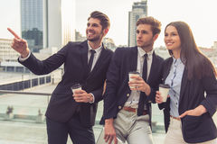 Beautiful young business people Stock Photography