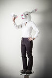 Beautiful young businesswoman mask rabbit megaphone Royalty Free Stock Photo