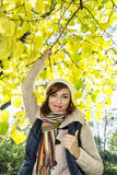 Beautiful young caucasian woman posing under the beech tree in a Royalty Free Stock Photos