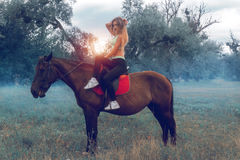 Beautiful young circus rider posing on a horse and stares Stock Photos