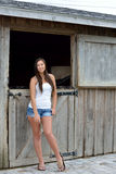 Beautiful young country girl on farm Stock Image