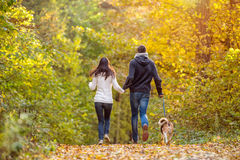 Beautiful young couple with dog running in autumn forest Stock Images