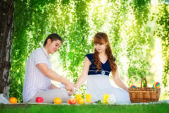 Beautiful Young Couple Having Picnic in Countryside. Happy Famil Royalty Free Stock Image