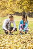 Beautiful young couple preparing their shoes for run in the park. Autumn environment Royalty Free Stock Images