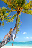 Beautiful young couple sitting on palm tree Royalty Free Stock Photos