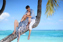 Beautiful young couple sitting on palm tree Stock Image