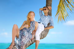 Beautiful young couple sitting on palm tree Royalty Free Stock Photography