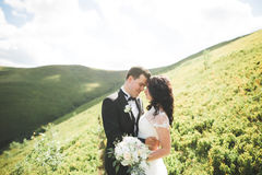 Beautiful young couple on their wedding day. Portraint close-up Stock Images